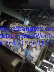 China Paper Digital Printing Fabric 3-15 sets colors effection fresh supplier